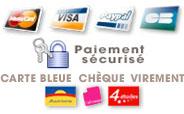 Paiement s�curis� par visa, mastercard, paypal, CB